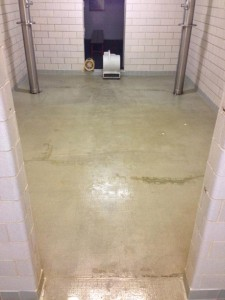 Before: The concrete floor was badly stained and discolored.